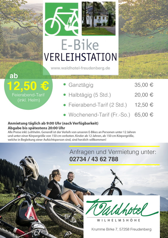 Ebike_Flyer_final_Web